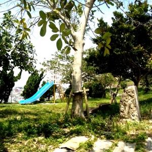 ダンダン畑でつかまえて 滑り台のある公園がお隣に♪