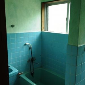 壮大なる庭造り宣言!  浴室