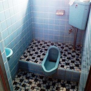 忍法、葉隠れの術! 和式トイレ