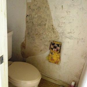 ねたての都市(まち)に住む。 トイレ