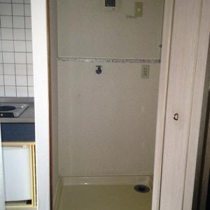 持たない贅沢、シングルライフ 洗濯機専用スペース
