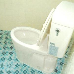 こちら市立病院駅前アパート   2F:トイレ