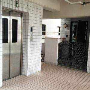ニコニコマンションNext T.O.  エレベーターホール~門扉
